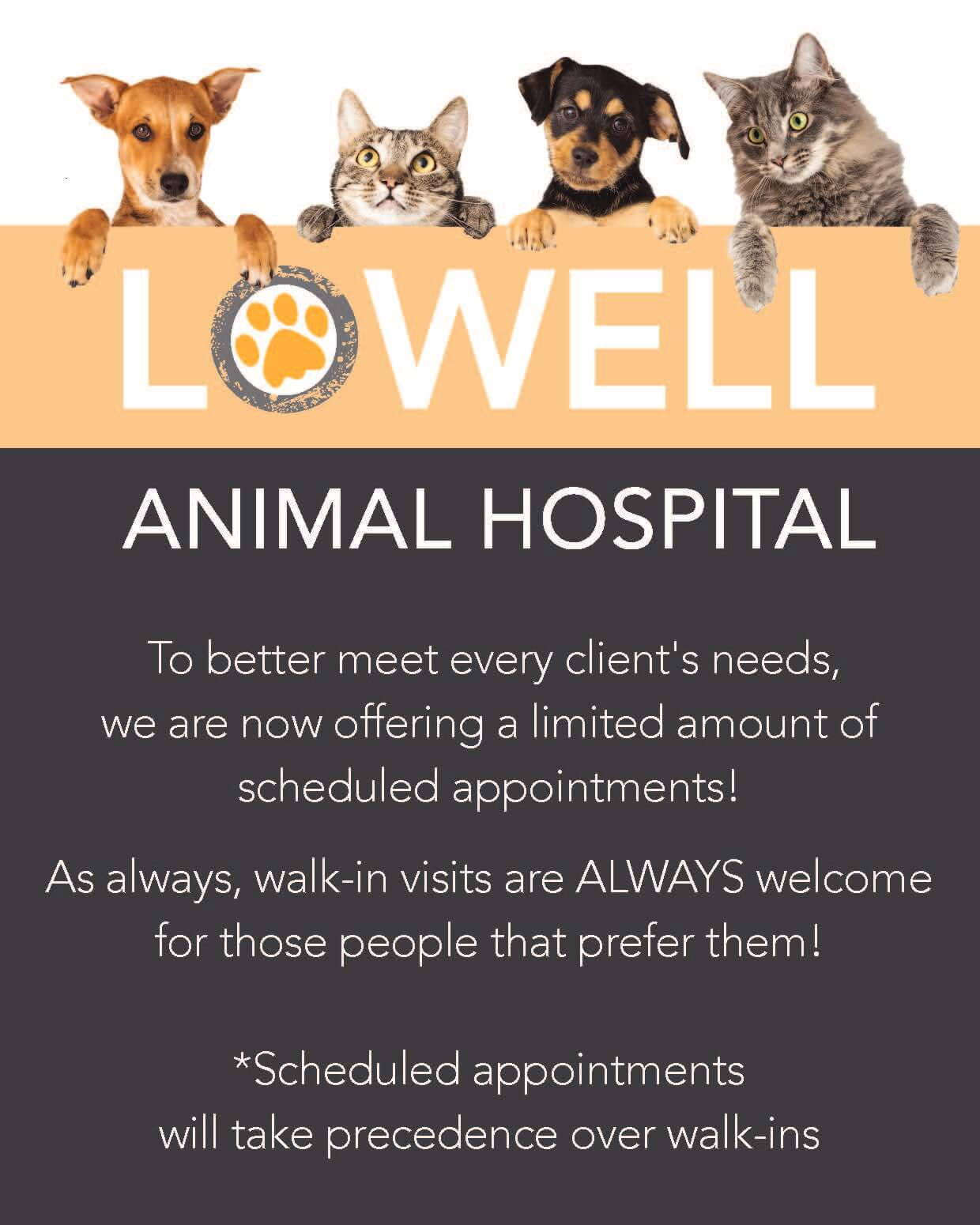 Lowell Animal Hospital Now Offering Limited Appointments