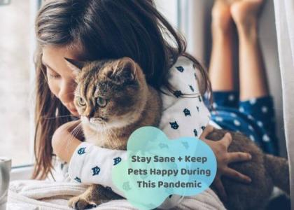 keep pets happy during pandemic
